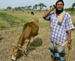Mobiles have empowered rural India